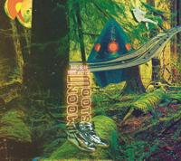 Bird Bear Hare and Fish - Moon Boots artwork