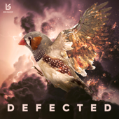 Defected (Extended)