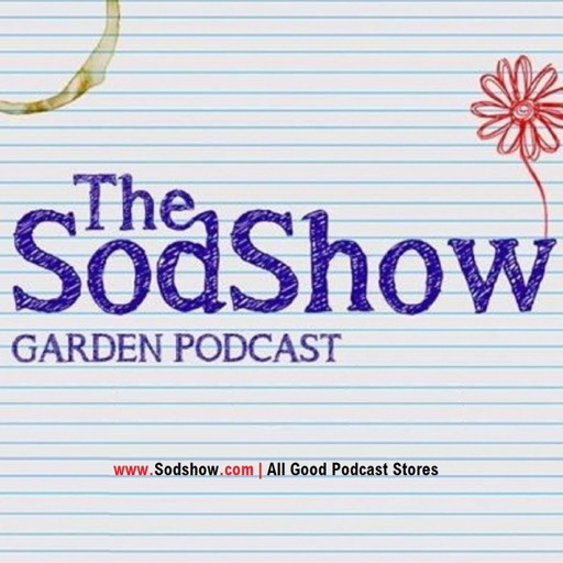 Cover image of The Sodshow, Garden Podcast - Sod Show