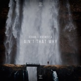 Ain't That Why - Single