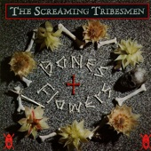 The Screaming Tribesmen - Igloo