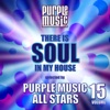 There is Soul in My House - Purple Music All Stars, Vol. 15