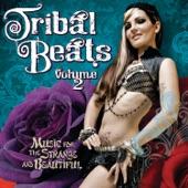 Balkan Beat Box - Adir Adirim
