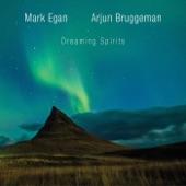 Mark Egan, Arjun Bruggeman - C Drone Expansion