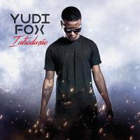 Yudi Fox - Introdução artwork