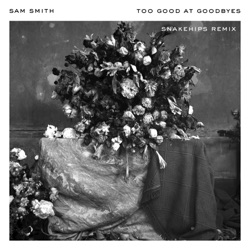 View album Sam Smith & Snakehips - Too Good at Goodbyes (Snakehips Remix) - Single