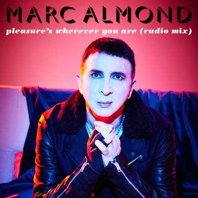 Pleasure's Wherever You Are - Single - Marc Almond