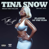 Megan Thee Stallion - Tina Snow  artwork