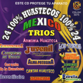 24 100% Huastecos, Vol. 1