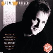 Steve Wariner - Small Town Girl