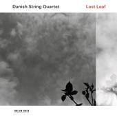 Danish String Quartet - Shine You No More