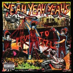 Yeah Yeah Yeahs - Date with the Night