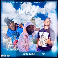 Why (feat. TD & Rod Wave) - Single Mp3 Download