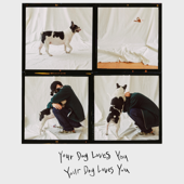 Your Dog Loves You (feat. Crush)