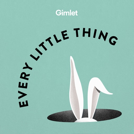 Cover image of Every Little Thing