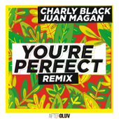 You're Perfect (feat. Juan Magan) [Remix] - Charly Black