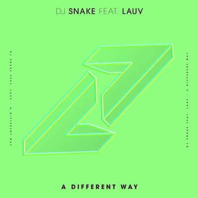 A Different Way (feat. Lauv) - DJ Snake song