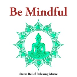 be mindful stress relief relaxing music for mindfulness meditation