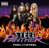 Steel Panther - Turn Out the Lights artwork