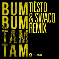 Bum Bum Tam Tam (Tiësto & SWACQ Remix) - Single Mp3 Download