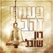 Paamon Zahav artwork