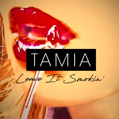 Leave It Smokin' - Tamia song