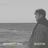 Stefan - Without You artwork