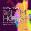 I Am House (Radio Edit) - Crystal Waters & Sted-E & Hybrid Heights