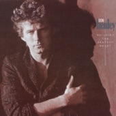 Don Henley - Drivin' With Your Eyes Closed