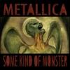 Some Kind of Monster - EP ジャケット写真