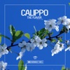 The Flavor - Single, Calippo