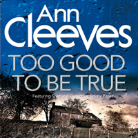 Ann Cleeves - Too Good To Be True artwork