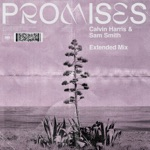 Promises (Extended Mix) - Single