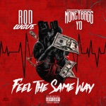 songs like Feel the Same Way (feat. Moneybagg Yo)