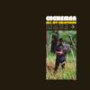 All My Relations - Cochemea