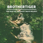 Brothertiger - This Must Be the Place (Naive Melody)