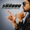 It Wasn t Me feat Ricardo Ducent feat Ricardo Ducent - Shaggy mp3