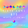 Waste It on Me feat BTS Cheat Codes Remix - Steve Aoki mp3