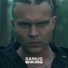 Sarius - Wiking artwork