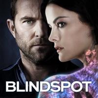 Blindspot, Season 3