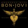 Livin On a Prayer - Bon Jovi mp3