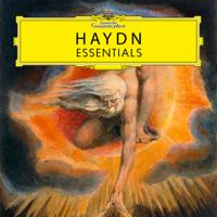 Various Artists - Haydn: Essentials artwork