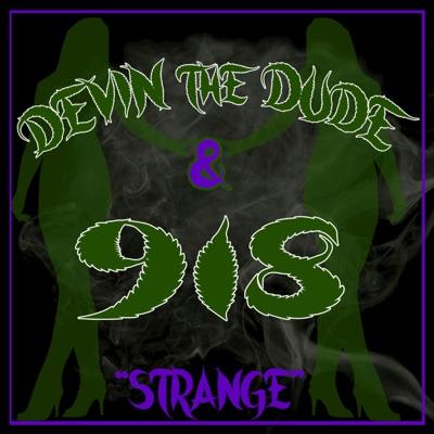 Strange - Single - Devin The Dude