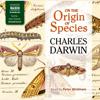 Charles Darwin - On the Origin of Species  artwork