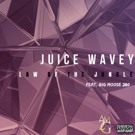 Law of the Jungle (feat  Big Moose 280) - Single by Juice Wavey