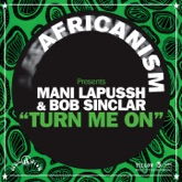 Turn Me On (Africanism Presents) - Single