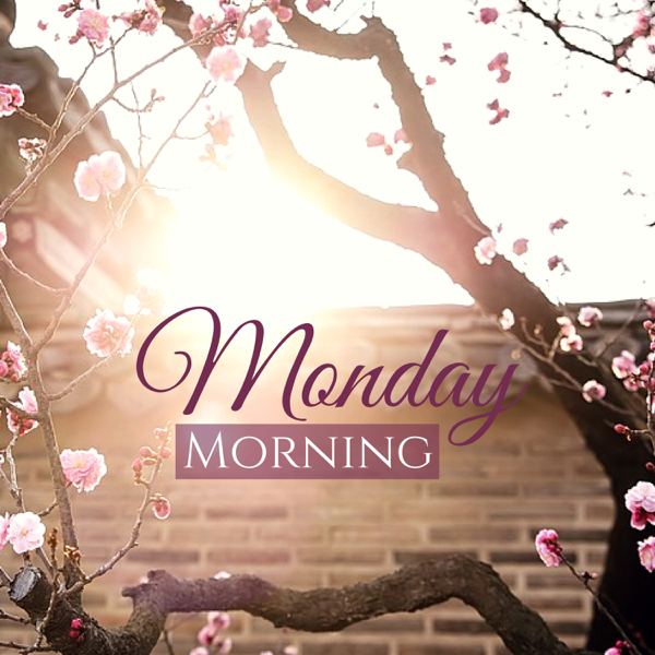 Monday Morning Wake Up With A Positive Mind Start The Week With