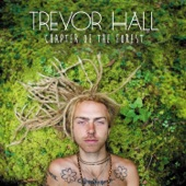 Trevor Hall - Wish Man