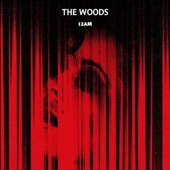 12AM - The Woods