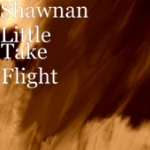 Back To You-Shawnan Little